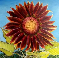 Evening Sun Sunflower, No. 2 by American Nature Painter Judith Saylor Allison