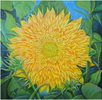 Teddybear Sunflower, a Painting by American Nature Painter, Judith A. Maddox Saylor, from the Sunflower Series at JAMS Artworks.