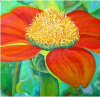 Mexican Sunflower , a Painting by American Nature Painter, Judith A. Maddox Saylor, from the Sunflower Series at JAMS Artworks.