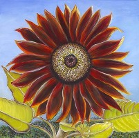 Evening Sun Sunflower, a painting by American Nature Painter, Judith A. Maddox Saylor, from the Sunflower Series at JAMS Artworks.
