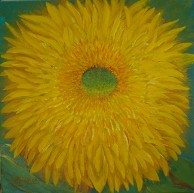 Teddybear Sunflower, No. 2, by Judith Saylor Allison, American Nature Painter