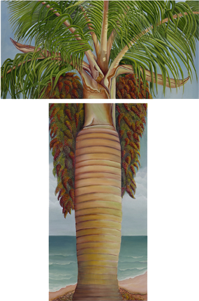 Buccaneer Palm Tree Painting by American Nature Painter, Judith A. Maddox Saylor at JAMS Artworks.com